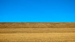 Along the Earthen Dam and the Electric Blue Sky by mudyfrog