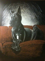 Great Dane in Charcoal by ShadowKira