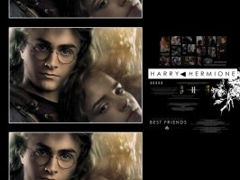 Harry and Hermione by radiochick