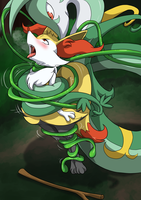 Braixen is taking damage from Bind by Danimarion