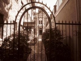 21st Century Sepia: Gate by cillanoodle