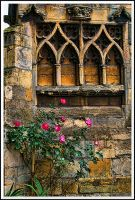 Roses against  a Church Wall.. by TheBaldingOne