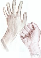 Hands by olivera-h