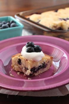 Blueberry Squares by LoveandConfections