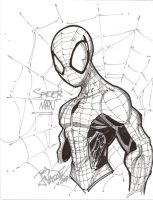Quick Spidey sketch by JoeyVazquez