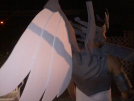 Saint Seiya Armor Wings/Feathers (1/2 built) by EijiiKun