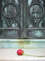 A Rose on Her Doorstep by J33P3RS-CR33P3RS