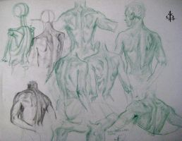 Some back studies by FUNKYMONKEY1945