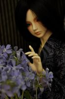Forget-me-not_59. Life by St-Climentina