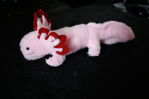 Axolotl Plushie by DhTier