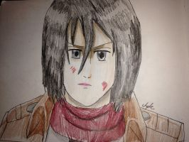 Mikasa Ackerman  by Africa2000