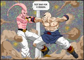 -DBM- Buu VS Tenshinhan by DBZwarrior