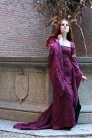 Medieval Burgundy Stock VI by DanielleFioreModel