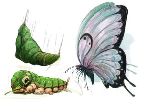 Caterpie - Metapod - Butterfree by MrRedButcher