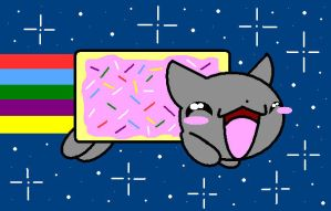 Nyan Cat by iamawsum