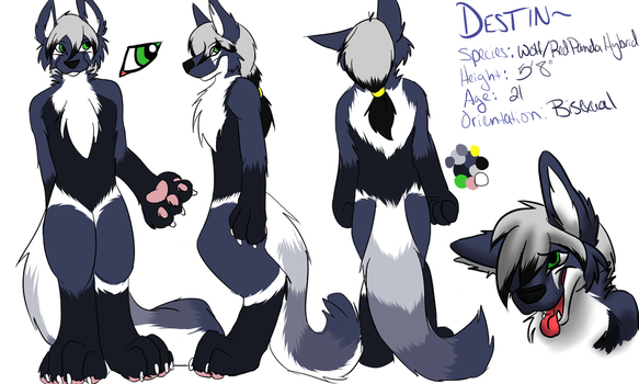 Destin's ref sheet new by Cryptic-Niteshade