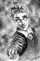 Harry Potter by enteringmymind