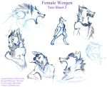 Worgen Female - Airesy Test 2 by frisket17
