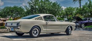 Mustang, 66 was a very good year by Nutdeep