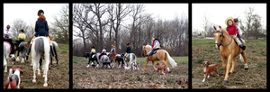 Breyer - Mid-Winter Trail Ride by The-Toy-Chest
