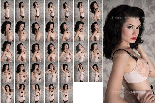 Stock: Brittany Jean Damask Close-Ups - 33 Images by stockphotosource
