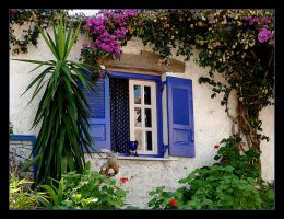 Around The Blue Shutters - Corfu Island by skarzynscy
