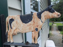 Moo Cow Sign by Saphira001