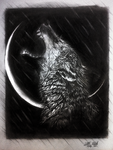 Lone Wolf by 3alaawi