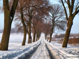 At the end of the road by waclawq