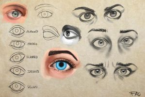 Eye Study by FelFortune