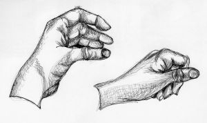 Contour Line Drawings- Hands by Aihin13