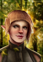 DA:Inquisition - The Wildcard by Striped-Stocking