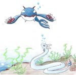 Kyogre and Dragonair by piratedragon0402