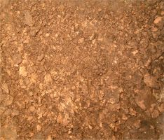 Dirt Texture 1 by Falln-Stock