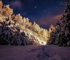 Wonderful winter night by PhotoForever88