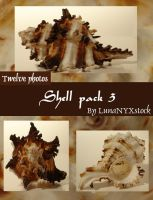 Shell pack - 3 by LunaNYXstock