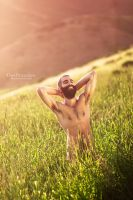 Golden by DanOstergren