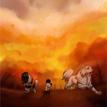 Who Set The Forest On FIRE by Hlaorith