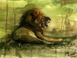the lion by kerko