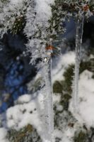 Icicled by Aeffa