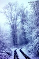 Blue Ridge Snow by isha-1