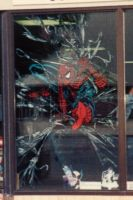 Spider-man Window painting by theRealJohnnyCanuck