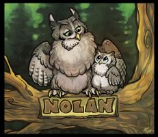 Owls for Nolan by lyosha