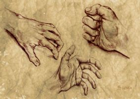 Hands by Amotion
