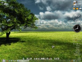 Afternoon shadow desktop by AndyClaro