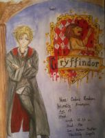 My Pottermore charachter by Dia-Yama073