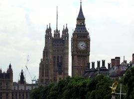 parliament by cms-star
