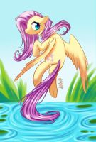 Fluttershy by WhitePhox