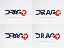 Logo Drago Logistics by Homogeneous