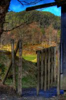 HDR Fence by StiligeCecilie